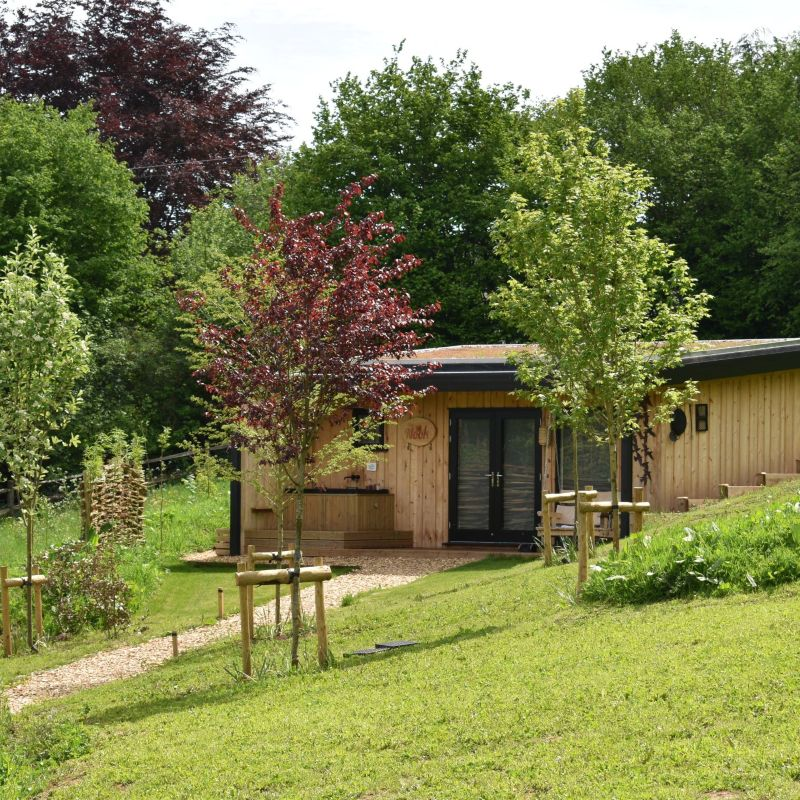 The Nook | Glamping Cabin in the Forest of Dean