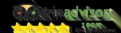 Tripadvisor 5 star reviews logo